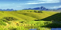 Gondwana, game reserve, Western Cape, Mossel Bay