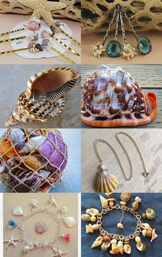 Shells To Have by Sheila on Etsy--Pinned with TreasuryPin.com