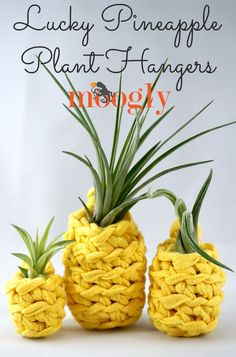 Lucky Pineapple Plant Hangers - free crochet pattern on Mooglyblog.com! Make these fun and fast pineapples with Lion Brand Fast-Track and Air Plants! Perfect for gifts, party and wedding favors, and adding a little luck anywhere you need it!