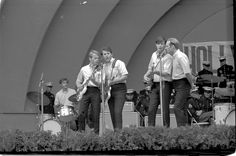 Summer of 1965, The Beach Boys and a local LA radio station hosted a concert at the Hollywood Bowl called The Beach Boy Summer Spectacular - it was the next biggest concert event that season next to the Beatles  - Along with The Beach Boys were Sam the Sham & The Pharaohs, The Byrds, Dino, Desi and Billy, The Kinks, Sonny & Cher, and the Righteous Brothers. Summer and the Hollywood Bowl now meant Rock n Roll out under the stars!