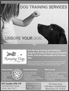 Romping Dogs flyer