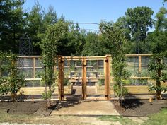 intense but beautiful with instructions vegetable garden fence ideas