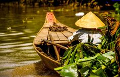 What to do in Vietnam in December?