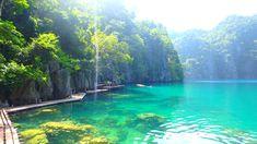 PALAWAN : de Puerto Princesa à Coron en 10 jours Puerto Princesa, Coron, Palawan, San Jose, Art Café, Les Philippines, Road Trip, River, Outdoor