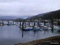 Queen Charlotte City Harbor, Haida Gwaii