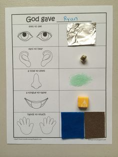 God Created Me: Five Senses Craft