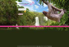 Porta di login bradipo
