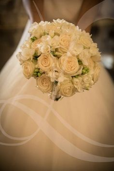 White roses classic and beautiful