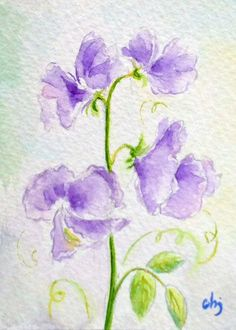 Original Aceo card miniature watercolour painting by CornerCroft, Watercolor Disney, Watercolor Rose, Watercolour Painting, Birth Flowers, Coups, Flower Cards, Disney Art, Painting Inspiration, Drawing Ideas