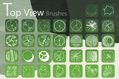 Tree Photoshop, Photoshop Brushes, Tree Psd, Trees Top View, Journal Cards, School Design, Design Bundles, Landscape Design, Coloring Pages