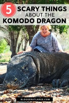 If getting up close to the scariest, deadliest lizard in the world is on your Bucket List, you need to read this post. I spent a couple of hours with them in Indonesia and this post covers where to find them, how to get to Komodo Island and 5 super scary facts about these dragons that'll freak you out!   #Komododragon #Komodoisland #Indonesia #travel #asia @bloggeratlarge