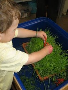 Cutting Grass Sensory Tub - could grow the grass first, as part of science EYFS Spring Activities, Motor Activities, Sensory Activities, Activities For Kids, Childhood Education, Kids Education, Health Education, Physical Education, Sensory Bins
