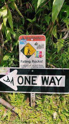 Green Cleaning, Photo Dump, Adventure Travel, Hawaii, Surfing, Vegan Recipes, Hiking, Walks, Vegane Rezepte