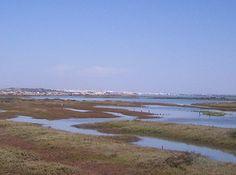 Caño de Sancti Petri desde Chiclana con San Fernando al fondo.