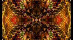 « Visions de l'ayahuasca » : approche pluridisciplinaire des usages contemporains de l'ayahuasca