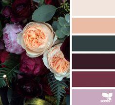 flora palette #color #inspiration
