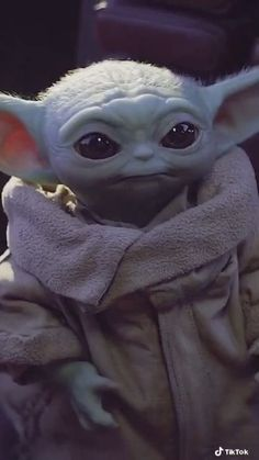 Yoda Pictures, Yoda Images, Star Wars Pictures, Yoda Funny, Yoda Meme, Star Wars Cartoon, Cuadros Star Wars, Star Wars Room, Harley Quinn Comic