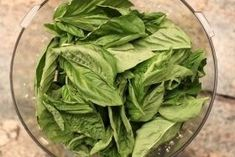 Pesto has a list of uses a mile long. It is so easy to make and freeze to have ready to enhance foods for breakfast, lunch, or dinner. Freezing Pesto, Freezing Fruit, Recipes Using Pesto, Pesto Recipe, Shrimp Stew, How To Cook Greens, Pesto Dip, Slider Sandwiches, How To Make Pesto