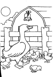 Farm animal coloring page Ducks in the pond ANIMALS TEMPLATES
