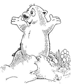 10 Best Groundhog Day Coloring Page images   Printable coloring ...