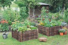 Green Relax e psicosi da orto: vita da giardino e da terrazzo | Vita su Marte