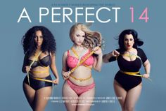 A Perfect 14: Teaser Trailer. A Perfect 14 explores the fascinating world of plus-size modelling and the women involved who are fighting to ...