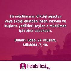 Bir müslümanın diktiği ağaçtan veya ektiği ekinden insan, hayvan ve kuşların yedikleri şeyler, o müslüman için birer sadakadır.  Buhârî, Edeb, 27; Müslim, Müsâkât, 7, 10  www.helalsitesi.com #hadis #musluman #agac #sadaka #helalsitesi #helal #saglikli #gimdes #helalgida