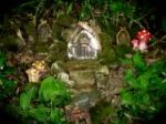 Enchanted Fairy Forest - Details Agenda Reviews Pictures and Tickets