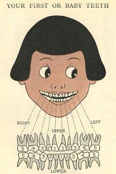 a child's book of the teeth, HW Ferguson, 1918