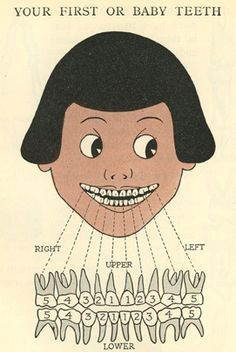 a child's book of the teeth, HW Ferguson, 1918