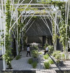 Gallery of Vegetable Trellis / Cong Sinh Architects - 6