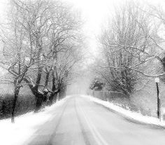 Winter Frost. East Hampton, NY by Nellie Vin, via Flickr