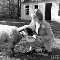 from life magazine archives. farm fashion!