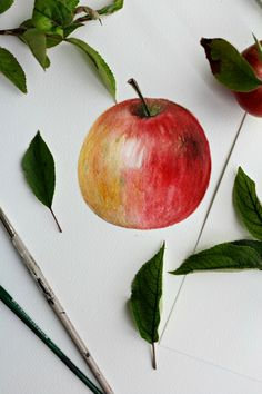 How to paint an apple with watercolors