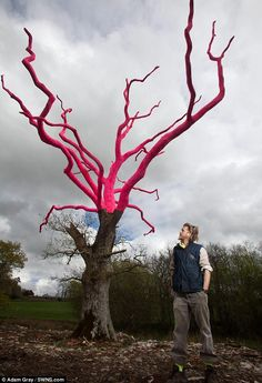 The tree is part of an art and sculpture exhibition by Mr Bruce (pictured) in the Devon village