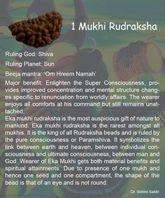 Different Uses of Different Rudraksha. Om Namah Shivaya, Hindu Rituals, Public Administration, Medical Research, This Is Us, Image, Spirituality