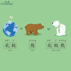 "Memorizing ""polar bear"" is super easy, right? What comes to mind when you hear the word 北极熊(běi jí xióng)?"
