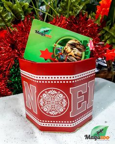 Christmas is fast approaching! 🎅 You can offer a gift card to reptile fans! Visit our site or our online boutique for more gift ideas! 🎁 #MagazooReptiles Reptile Accessories, Reptiles, Fans, Gift Ideas, Boutique, Canning, Christmas, Gifts, Universe