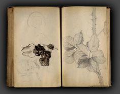 Seurat Sketchbook
