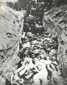 Holocaust Controversies: Photographic documentation of Nazi crimes