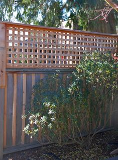 DIY : privacy fence - trellis added to the top of the fence panels to add height and privacy