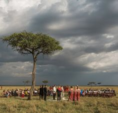 """Tomorrow on the blog a true testament to how much the locale impacts gatherings.  From @jonaspeterson (photographer) """"Some places stay with you forever. When wildlife photographer Nina and her Sebastian asked me to shoot their wedding in Masai Mara in Kenya I didnt know this land would touch me so deeply. It sung to me in a way I didnt know possible found new chords and played on strings I didnt know I had inside me."""" _____________________________________ by thevenuereport"""