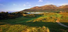royal county down - Google Search