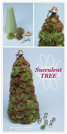 "I would make a chicken wire cone shape filled with soil then covered with the succulents planted into that soil. They are then a ""living"" tree that you can enjoy for a long time."