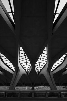 Architecture / Black and White Photography / n-architektur: Gare de Saint-Exupéry TGV Santiago Calatrava Photographyed by Arnd Dewald Airport Architecture, Futuristic Architecture, Contemporary Architecture, Amazing Architecture, Art And Architecture, Installation Architecture, Chinese Architecture, Architecture Details, Santiago Calatrava