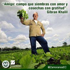 """""""Amigo: campo que siembras con amor y cosechas con gratitud"""". Gibran Khalil"""