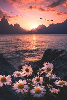 ~The most beautiful sunset is when you have it with your beloved one and most beautiful sunrise is quite the same~ Tumblr Wallpaper, Nature Wallpaper, Wallpaper Backgrounds, Wallpaper Lockscreen, Surfing Wallpaper, Sunrise Wallpaper, Hipster Wallpaper, Cute Backgrounds, Photo Wallpaper