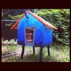 I built a rabbit hutch!