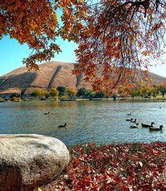 Hart Park, Bakersfield, Kern, California socaltoto11