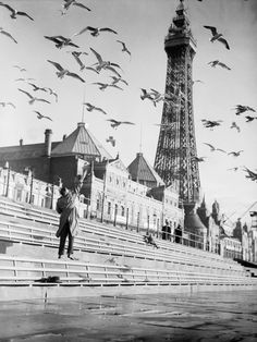 Flocks of seagulls circle around Blackpool Tower in search of food, Lancashire, United Kingdom, February 26, 1937. Getty Images